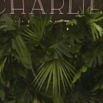 Charlie_Bar5